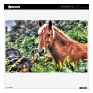 Beautiful Equines Horse-lover's Gift MacBook Air Skin
