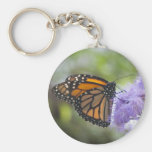Beautiful Exoitc Butterfly keychain