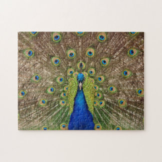 Beautiful exotic peacock print puzzle