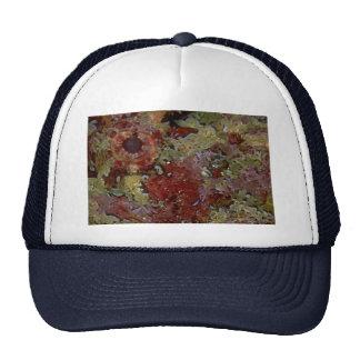 Beautiful Eye of a Galapagos scorpion fish Trucker Hat