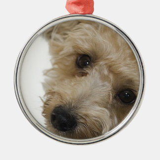 Beautiful Eyes of a Yorkie Poo Puppy Round Metal Christmas Ornament