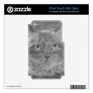 Beautiful Eyes Siamese Cat iPod Touch 4G Skin