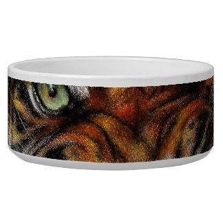 Beautiful face of big cat. bowl