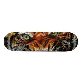 Beautiful face of big cat. skateboard