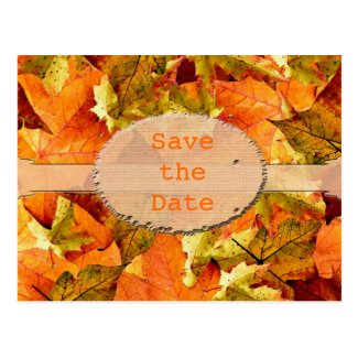 Beautiful fall color leaves save the date postcard
