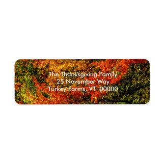 Beautiful Fall Foliage Photo Return Address Labels