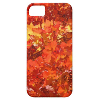 Beautiful Fall Leaves iPhone cases gifts Thanks iPhone 5 Cover