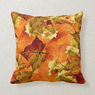 Beautiful Fall Leaves Pillow!