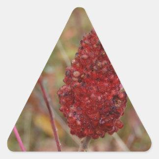 Beautiful Fall Nature Gift Triangle Sticker