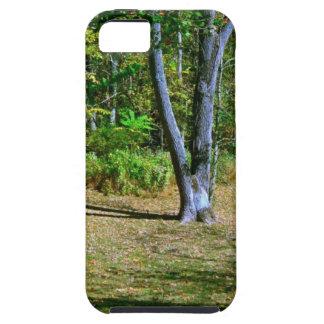 Beautiful Fall Scenery iPhone 5 Case