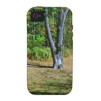 Beautiful Fall Scenery iPhone 4 Cases