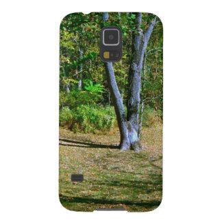 Beautiful Fall Scenery Case For Galaxy S5