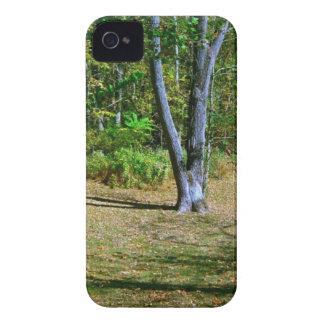 Beautiful Fall Scenery iPhone 4 Case-Mate Cases