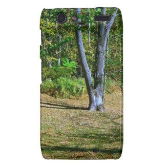 Beautiful Fall Scenery Motorola Droid RAZR Covers