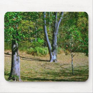 Beautiful Fall Scenery Mouse Pads