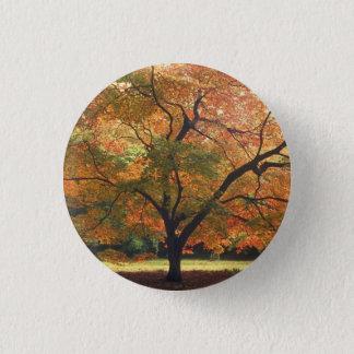 Beautiful Fall Tree Pinback Button