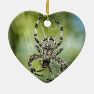 Beautiful Falling Spider on Web Ceramic Ornament