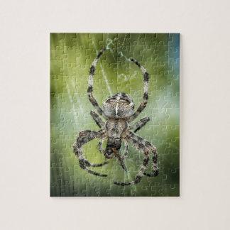 Beautiful Falling Spider on Web Jigsaw Puzzle