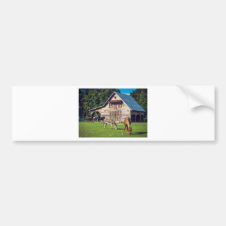 Beautiful Farm Scene with Horses and Barn Bumper Sticker