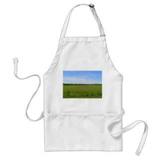 Beautiful farmland blue skies crops in field photo adult apron