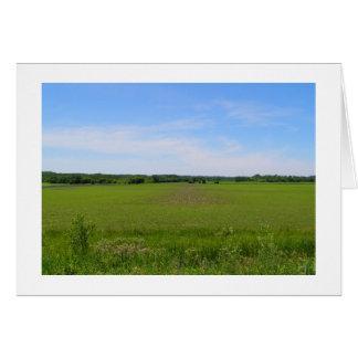 Beautiful farmland blue skies crops in field photo card