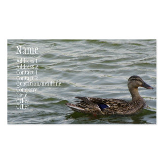 Beautiful Female Mallard Duck Double-Sided Standard Business Cards (Pack Of 100)