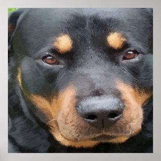 Beautiful Female Rottweiler Portrait Vector Poster