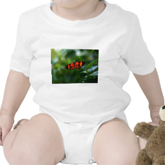 Beautiful Fiery Red and Black Butterfly Baby Bodysuits