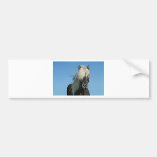 BEAUTIFUL FJORD PONY HORSE STALLION BUMPER STICKER