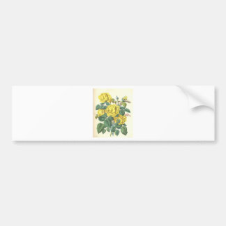 beautiful floral bouquet with spring flowers. bumper sticker