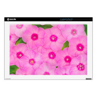 """beautiful floral decoration decals for 17"""" laptops"""