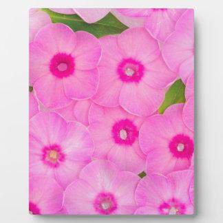 beautiful floral decoration plaque