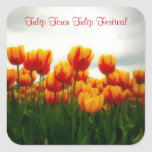 Beautiful  Floral Photo - Tulip Blooms Stickers