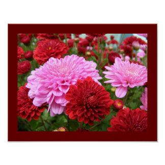Beautiful Floral Poster