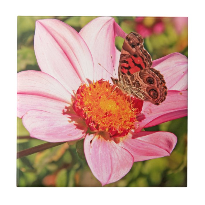 Beautiful Flower and Butterfly Tile