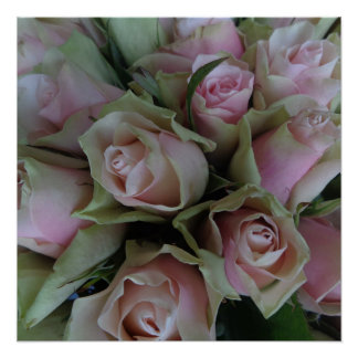 Beautiful Flower Bouquet of Pink Roses Poster