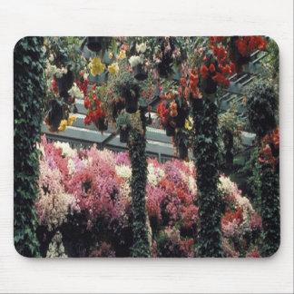 Beautiful flower-garen on a mousepad