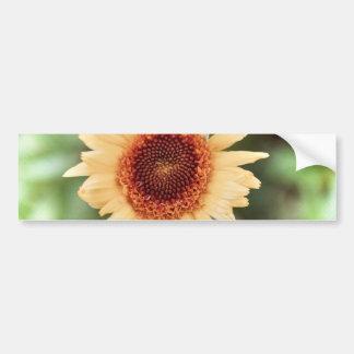 Beautiful Flower Gift Bumper Sticker