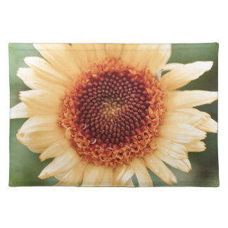 Beautiful Flower Gift Cloth Placemat
