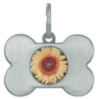 Beautiful Flower Gift Pet Tag