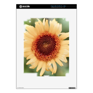 Beautiful Flower Gift Skins For The iPad 2