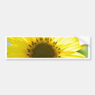 Beautiful Flower in the Sun Bumper Sticker