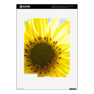 Beautiful Flower in the Sun iPad 3 Decal