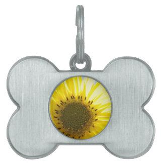 Beautiful Flower in the Sun Pet ID Tag