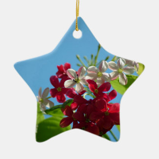 Beautiful flower in the world 02 Double-Sided star ceramic christmas ornament