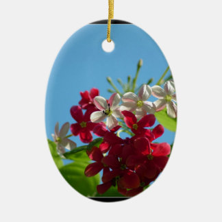 Beautiful flower in the world 02 Double-Sided oval ceramic christmas ornament