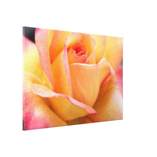 Beautiful Flower Pic Gallery Wrap Canvas