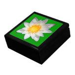 Beautiful flower white water lily keepsake box