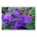 Beautiful flowered notecard stationery note card