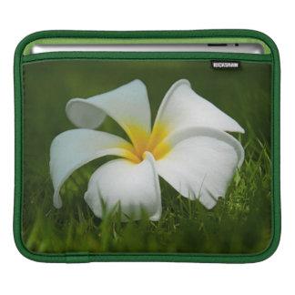 Beautiful Flowers Close-Up - iPad sleeve